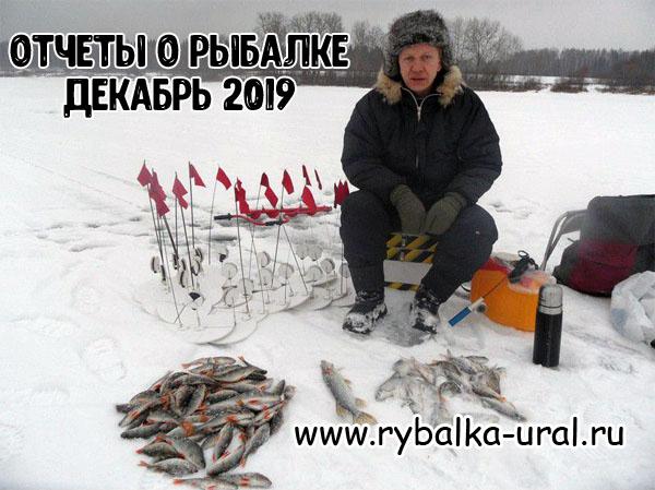 otchety_rybalka_12_2019_01.jpg